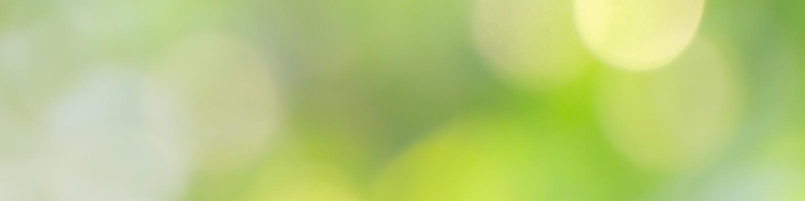 TopBanner-Green